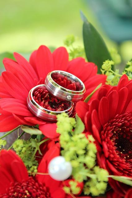 【二人の出会い】嫁「好きな人が出来たの」 、俺ショック「おめでとう、さようなら」、一人で泣いた・・・
