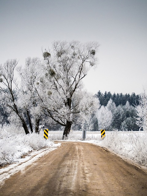 雪道で「270度ターン」、反対車線と後ろの車はびたっと停止、俺も奥さんも固まって動けず…